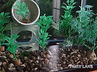 Fish12110603