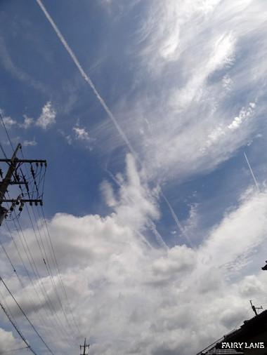 Sky17071704
